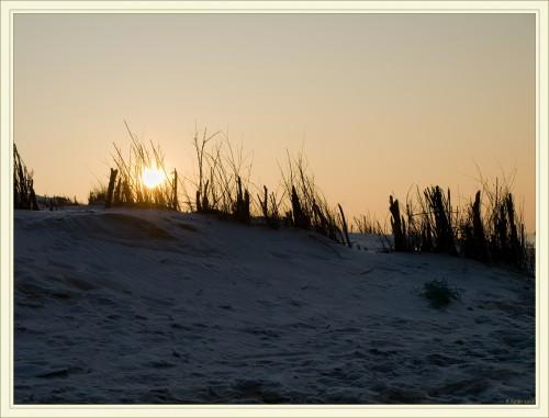 Coucher de soleilo sur les dunes recouvertes de givre