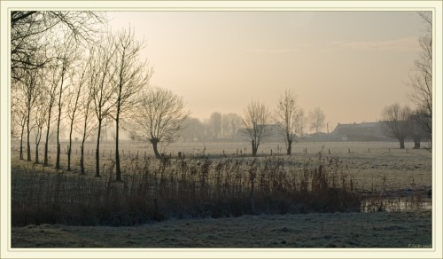 Campagne flamande sous le givre et le soleil du matin